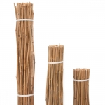 Καλάμια Bamboo Στήριξης Φυτών Κηπουρικής Γεωργίας Ελαιουργίας (50τμχ) 24-30mmx350cm