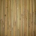 Καλαμωτή Bamboo Tonkin 14-20mm Mε Εσωτερικό Γαλβανιζέ Σύρμα Χονδρό 150Χ250cm