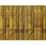 Ιστός Bamboo Ξηραντηρίου Πιτσιλωτό Χρώμα Ø13-14x300cm