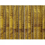 Ιστός Bamboo Ξηραντηρίου Πιτσιλωτό Χρώμα Ø13-14x400cm